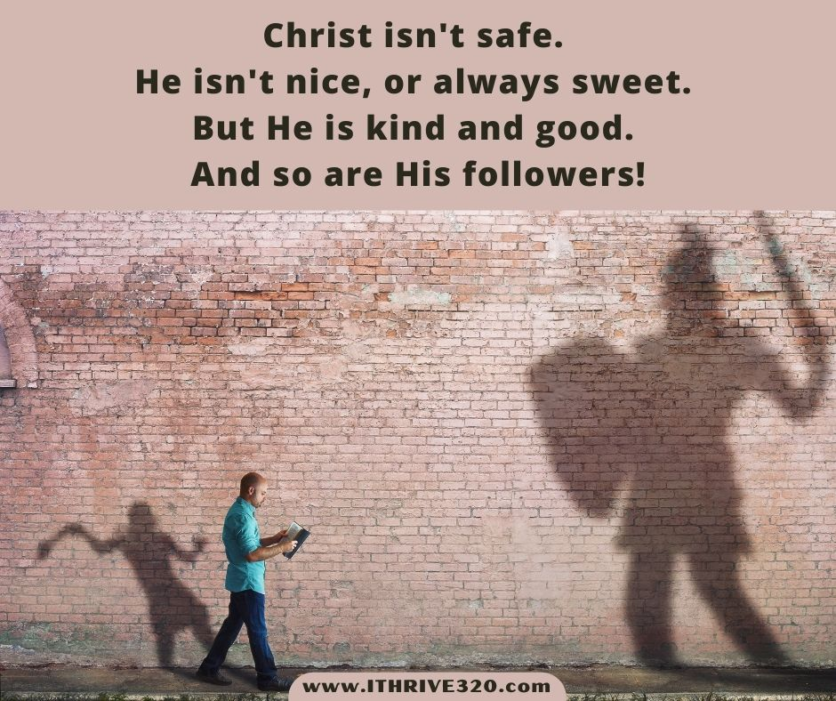Kindness, niceness, and Scripture