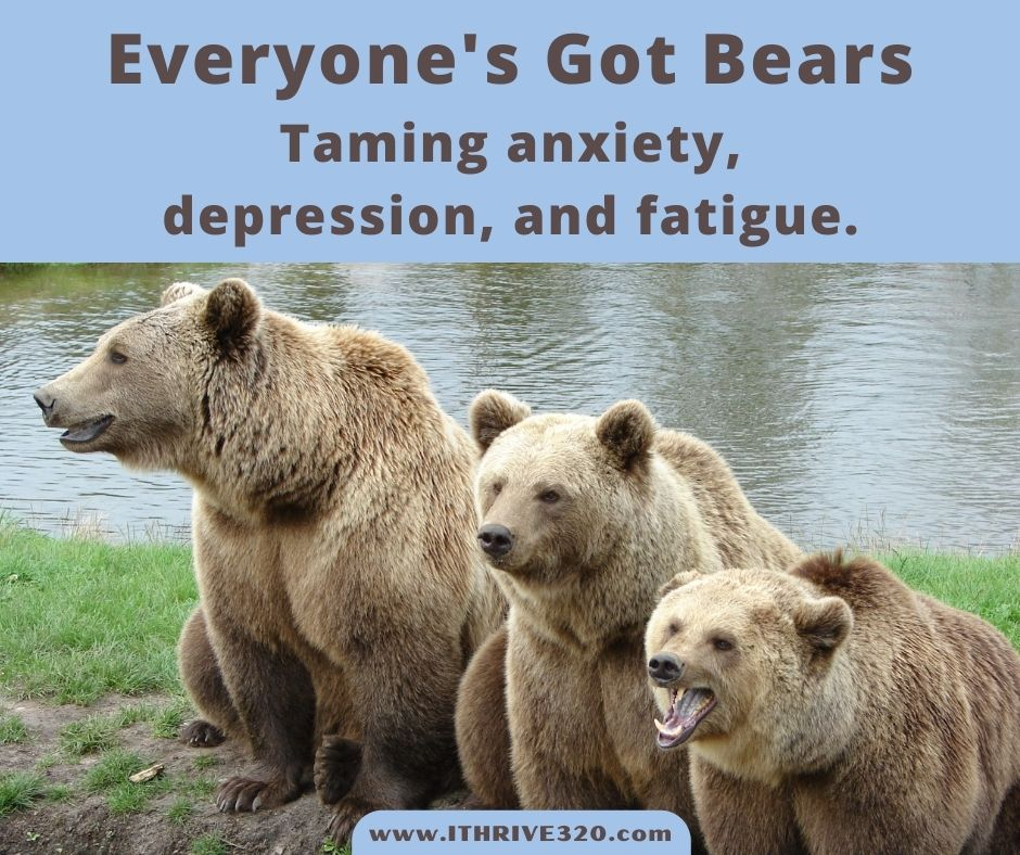 Taming anxiety, depression, and fatigue