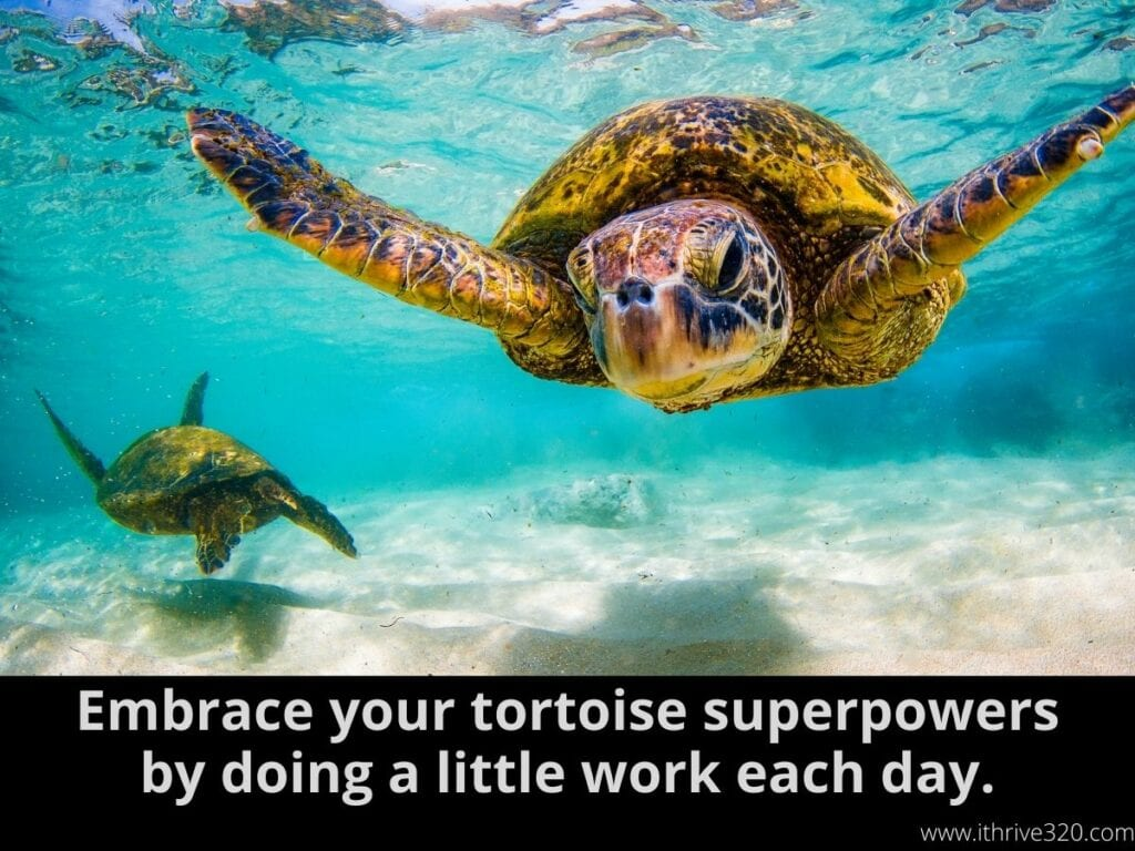 How to Boost Creativity Idea 5: Do a little work each day and embrace your tortoise superpowers.